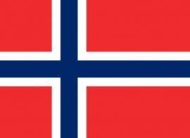 Vlag Noorwegen 90 x 150cm