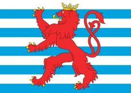 Vlag Luxemburg met embleem