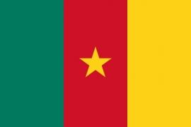 Vlag van Kameroen