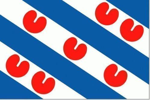 Vlag Friesland /  provinsje Fryslân vlag