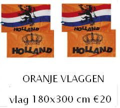 Grote koningsdag vlag oranje