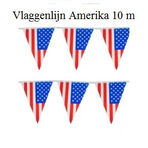 10 Meter Vlaggenlijn Amerika