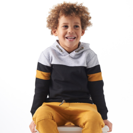 Boys hooded sweater antracite, Little label