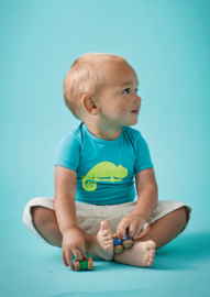 Boys t-shirt blue green, Tapete