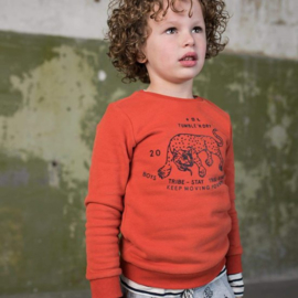 Vico sweater Orange dark, Tumble 'n Dry