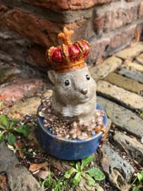 Hamster in pot met goud