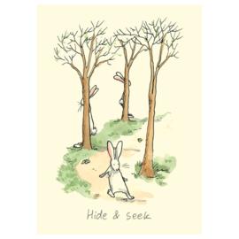 M176 Hide and Seek