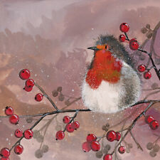 X176 Robin & Red Berries