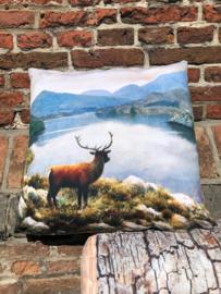 Hert in de Highlands