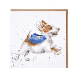CS169 Super dog