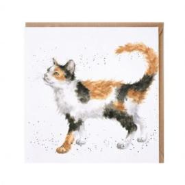 CS161 Calico Cat