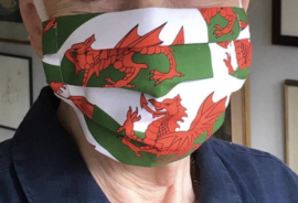 Mondkapje Welsh Dragon