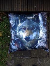Eigen Import: Wolf in Bos