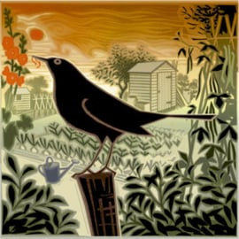 JT Blackbird