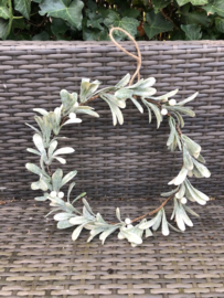 Mistletoe krans