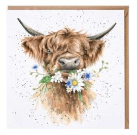 CS150 Daisy Cow