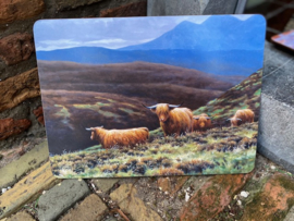Julian Friers Placemat Highland Cows 2