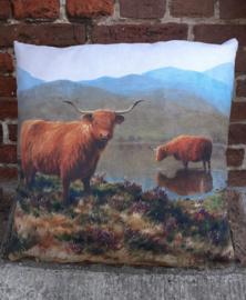 Schotse Hooglanders bij Loch