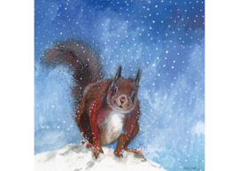 X177 Snow & Red Squirrel