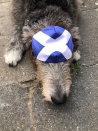 Mondkapje Saltire (Schotse Vlag)