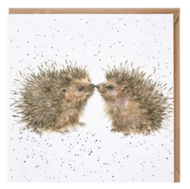 CS142 Hogs and Kisses