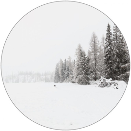 Muurcirkel snow 30 cm.