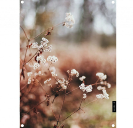 Tuinposter dry flower 60x80cm