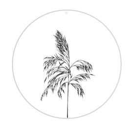 Roundie   Wild palm