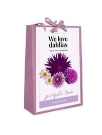 Cadeautas Dahlia Purple Love