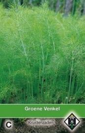 Venkel, Foeniculum vulgare