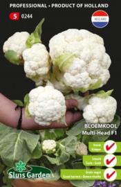 Bloemkool 'Multi Head F1', Brassica oleracea var. botrytis