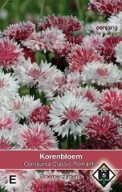 Centaurea cyanus 'Classic Romantic', Korenbloem