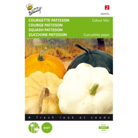 Patisson 'Colour Mix', Cucurbita pepo