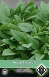 Ocimum basilicum 'Genovese', Basilicum groen