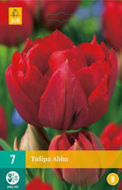 Tulipa dubbel vroeg 'Abba'