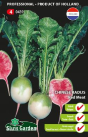 Chinese radijs watermeloenradijs 'Red Meat', Raphanus sativus var sativus