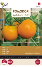 Tomaat 'Arancia', Solanum lycopersicum