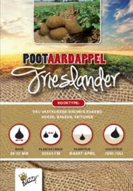 Aardappel kruimig kokend 'Frieslander'