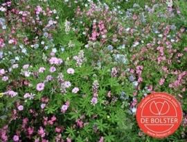 Bloemenmengsel laag Biologisch