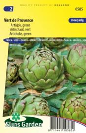 Artisjok 'Vert de Provence', Cynara cardunculus var. scolymus