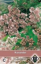 Coriandrum sativum, Koriander