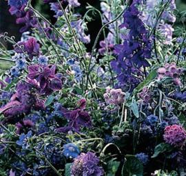 Tuinboeket in Blauw (voorlopig niet leverbaar)