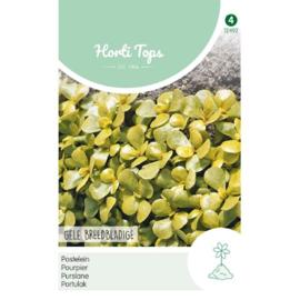Postelein gele breedbladerige 'Aurora', Portulaca oleracea