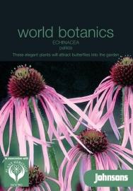 Echinacea pallida, Egelzonnehoed