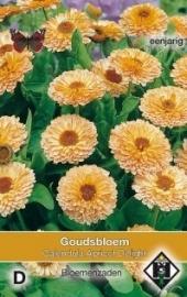 Calendula officinalis 'Apricot Delight', Goudsbloem