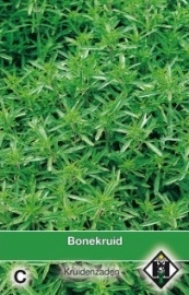 Bonenkruid, Satureja hortensis