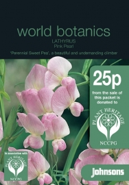 Lathyrus latifolius 'Pink Pearl', Siererwt vaste