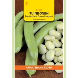 Tuinboon groenkokend 'Masterpiece Green Longpod', Vicia faba