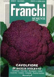 Bloemkool 'Sicilia Violetto', Brassica oleracea var. botrytis (voorlopig niet leverbaar)