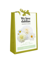 Cadeautas Dahlia White Love